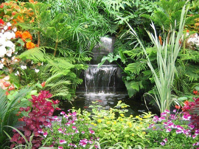 exotic-plant-garden.jpg