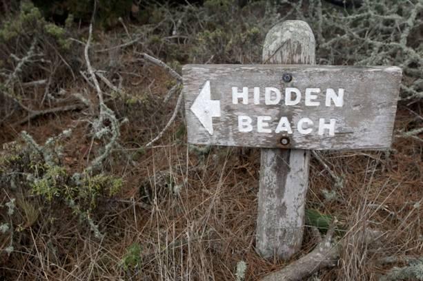 Hiddenbeach.jpg