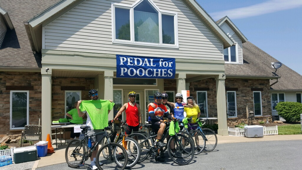 pedals for pooches02.JPG