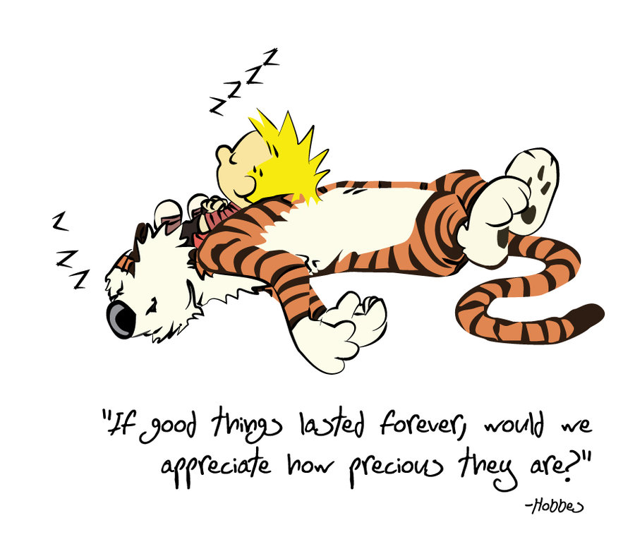 hobbes_quote_by_lizink-d54o8y7.jpg