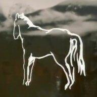 Hollow Horse
